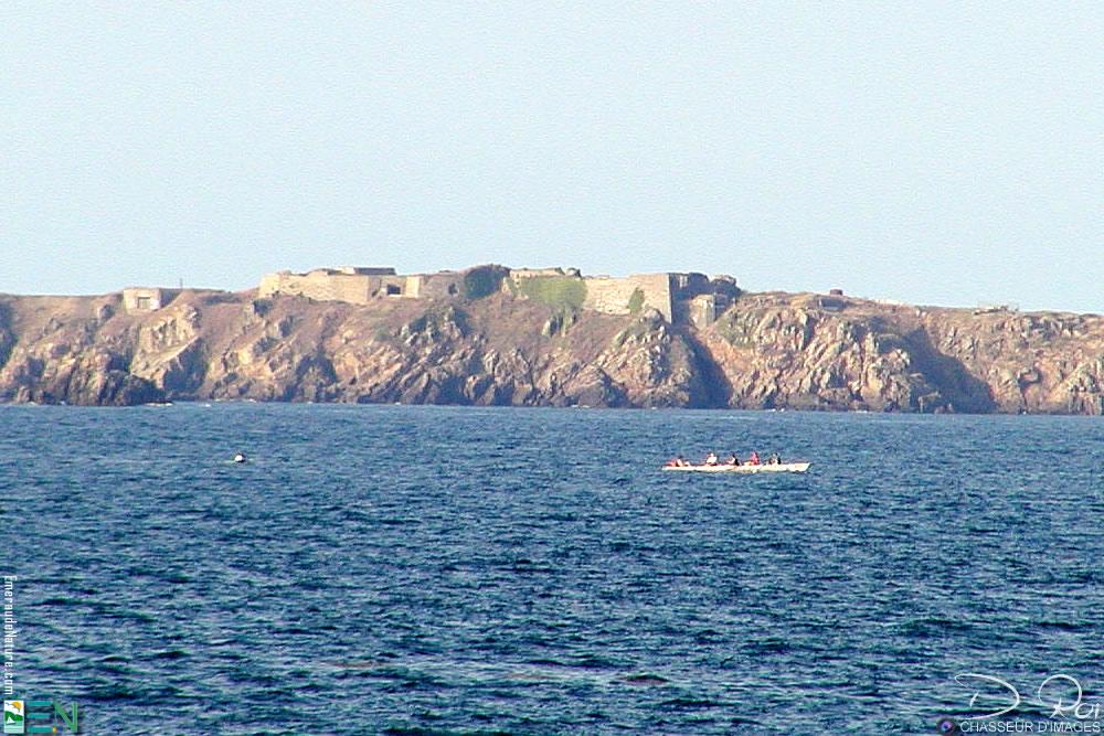 Fort d'Arboulé ou fort de la varde